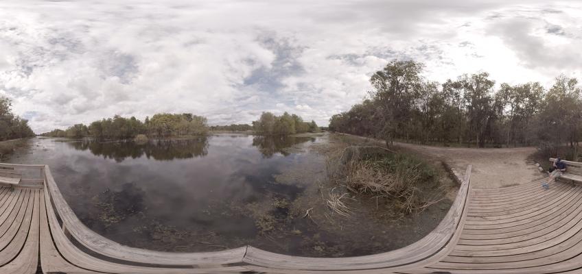 Brazos Bend State Park – Shot 4