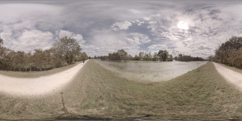 Brazos Bend State Park – Shot 1